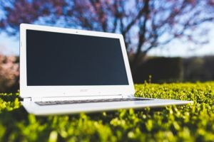 nature-laptop-notebook-grass